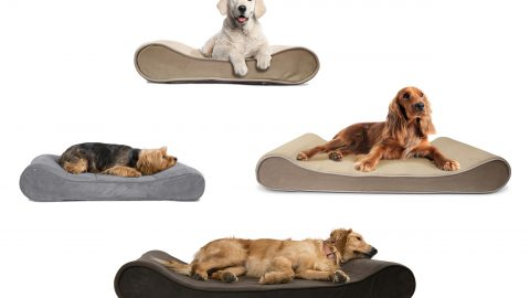 FURHAVEN Orthopedic Pet Bed with Seat Belt Clip $10.99